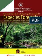 Evaluación poblaciones forestales El Castillo-1266510690_
