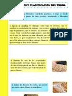 Expo de Cereal Unidad II (2)