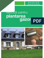 Plantare-gazon File 28
