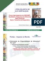 PerdasPosColheitasFrutaseHortalicas.pdf