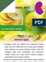 GgGA, Dr. Hudoyo