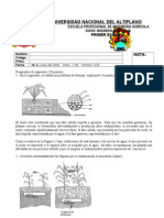 Respuesta Primer Examen 2008-II