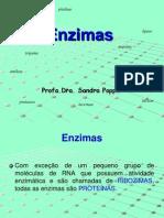 5_ENZIMAS(1)