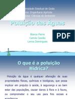 Poluição das águas.pptx