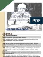 A Ideologia Da Sociedade Industrial 2