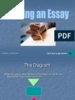 Writing an Essessa
