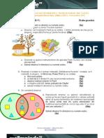 2013_Informatică_Alte concursuri_Subiecte__0