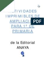 ACTIVIDADES 1 GRADO.pdf