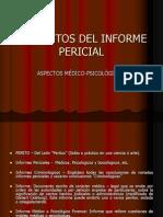 Elementos Del Informe Pecircial
