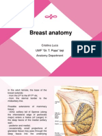 Anatomie San - curs Senologie Mai 2012