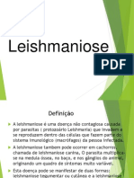Leishmaniose.pptx