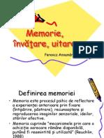 106564903-Memoria-invăţarea-uitarea