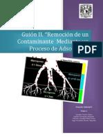 Guión_II_Remoción de un contaminante mediante un proceso de adsorción