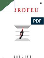 Flocage Au Fibrofeu