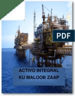 Activo Integral KMZ
