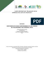 Informe Analisis de Calidad de Agua de Vertiente