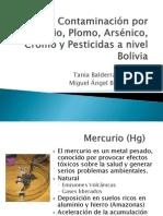 Contaminación por Mercurio, Cromo BALDERRAMA; BOHRT