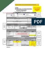 Modelo de Llenado de Formulario EE.ff_ Renov PJ