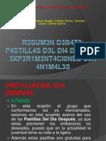 R3SUM3N D3B4T3