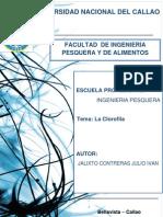 Monografia La Final Aguanile