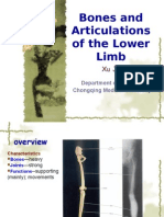 4th-Bones and Articulations of the Lower Limb