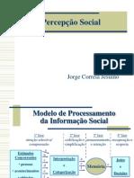 Percepcao Social
