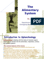 7th-The Alimentary System