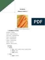 Buku Wortel