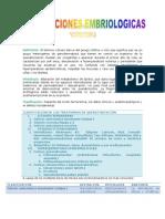 ALTERACIONES EMBRIOLÓGICAS (Reparado)