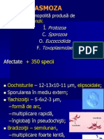 TOXOPLASMOZA