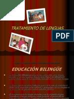 Tratamiento de Lenguasquechua