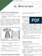 Boroneant Arheologia Pesterilor 10 Saline Mine de Sare