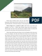 Dataran Tinggi Plateau