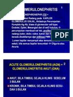 Mk Nea Slide Glomerulonephritis