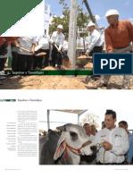 T04_CAP_04_2008.pdf