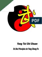47824166 Tai Chi Os 10 Principios