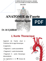 8- Aorte thoracique