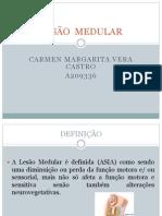 LESÃO  MEDULAR.trabalhopwrp.pptx