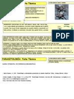 Pseudolynchia Canariensis(Lynchia Maura)- Inter