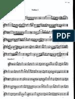 Aria en Re Bach Propina