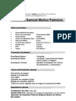 Curriculum vitae Fdo. muñoz p