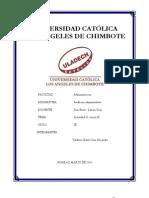 Informe de Auditoria Macro Organizacional