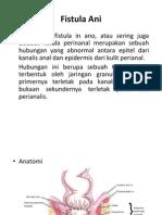 48943697-Fistula-Ani