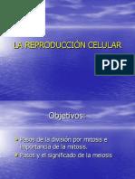 capitulo4[1].2.pdf