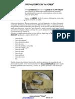 olivaria.pdf