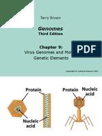 Genomes3e_ppt_ch09