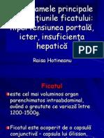 3. hepatite