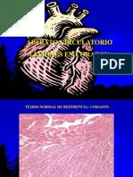 Practico Trastornos Circulatorios Patologia