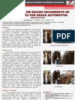 OTITE MÉDIA EM EQUINO DECORRENTE DE INTOXICAÇÃO POR GRAXA AUTOMOTIVA
