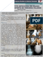 PODODERMATITE INFECCIOSA EM EQUINO ASSOCIADA A OSTEÍTE DE TERCEIRA FALANGE